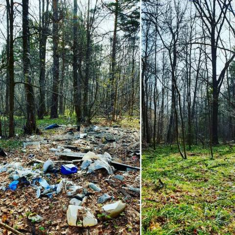 Очистим лес от мусора!