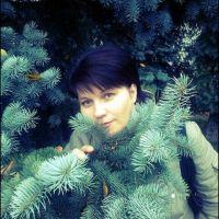 Коробкова Елена Владимировна